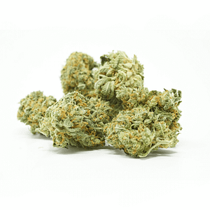 citrushaze-sativa-bcweedonline-strain
