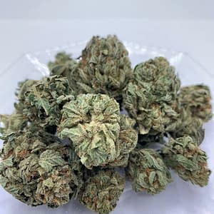 pineapple-xpress-bcweedonline-sativa