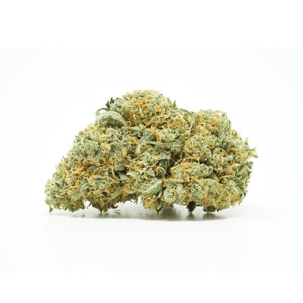 citrus-haze-sativa-bcweedonline