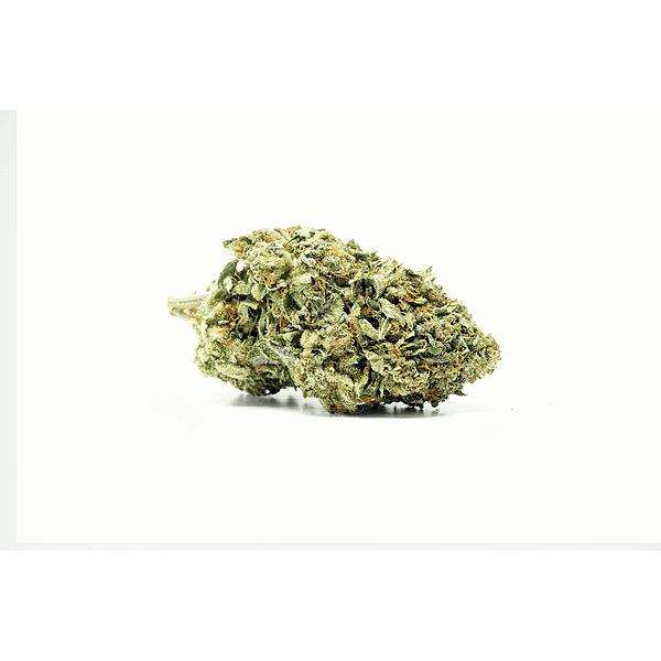 PumpkinKush-og-bcweedonline2021