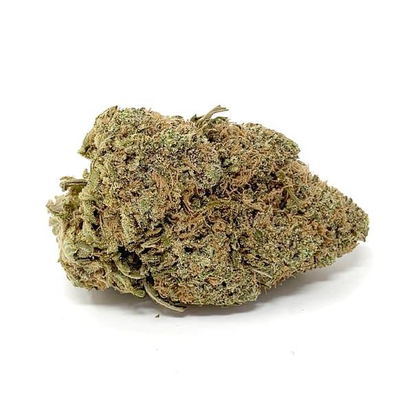 chocolope-strain-sativa-bcweedonline2021